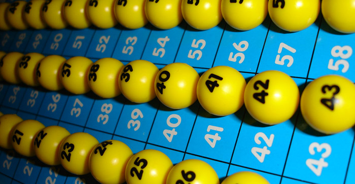bingo-eefde